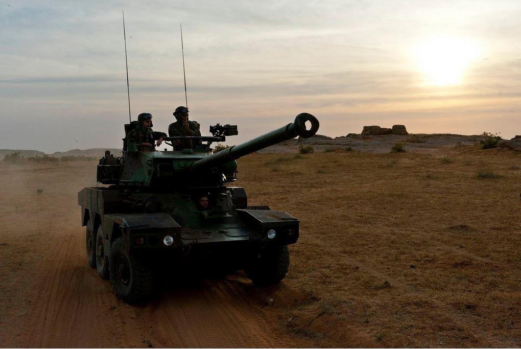 serval_41